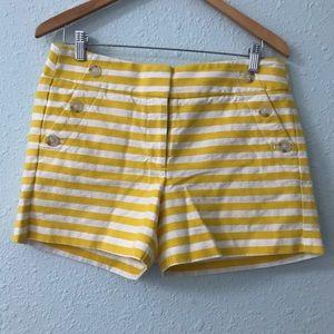 LOFT nautical striped high waisted shorts size 6